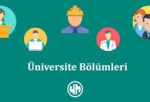 Üniversite bölümleri