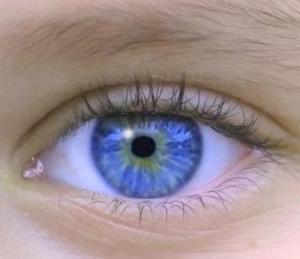 La regla del 'ojo por ojo' se basa en la reciprocidad de las partes.