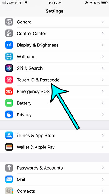 open the touch id and passcode menu