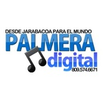 palmera digital