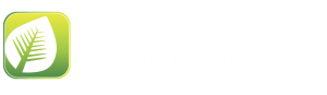 Durango Downtown local events logo