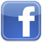 Facebook IDX Icon