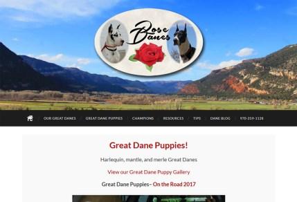 Rose Danes portfolio image