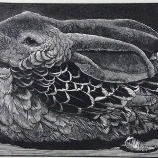 Nicholas Wilson (US), Feathered Friend