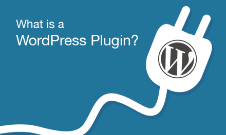 What is a WordPress Plugin?