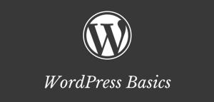 WordPress basics picture