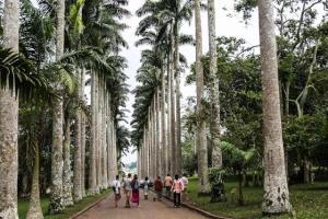aburi botanical garden entrance