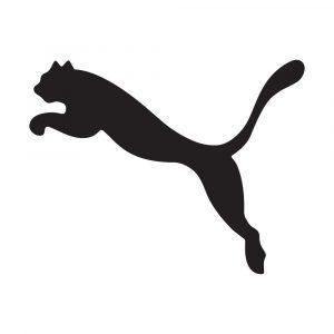 Sportswear company Puma tries reverse domain name hijacking