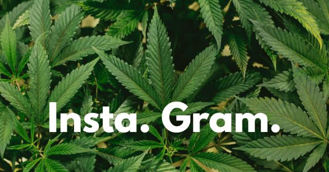 "Picture of marijuana with the words ""Insta Gram"""