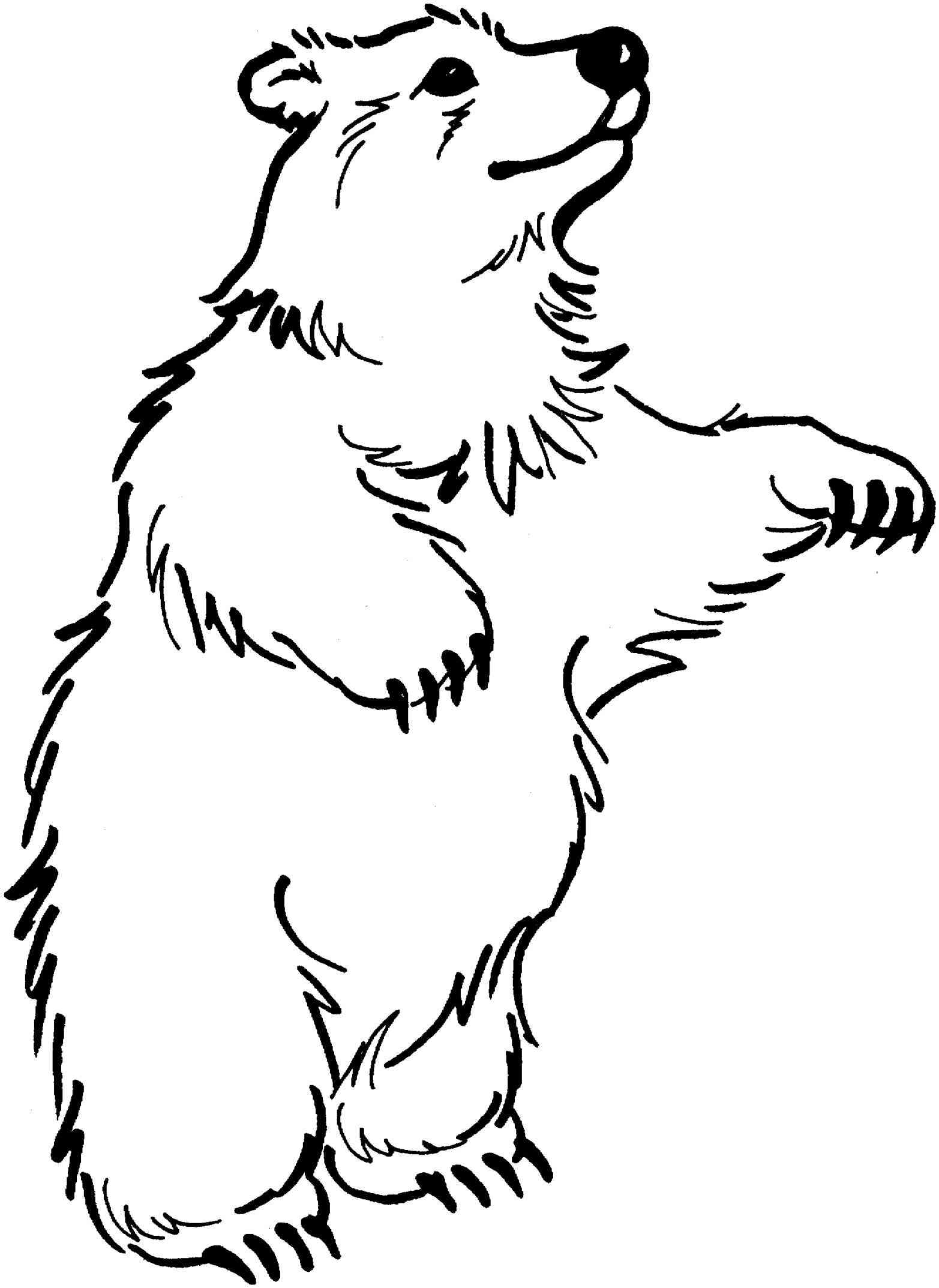 Bears Clipart Free Download On Webstockreview