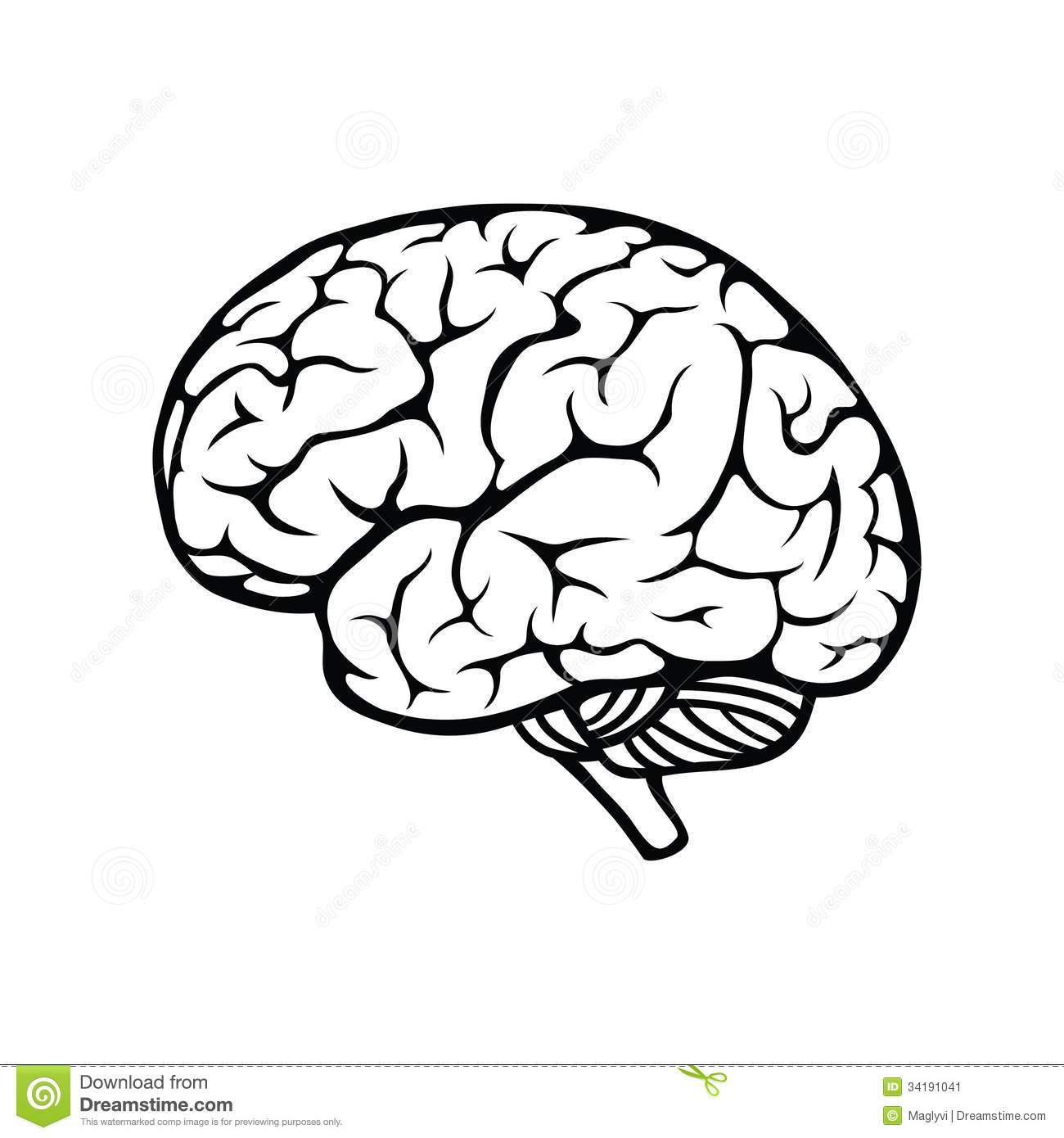 Brain Clipart Printable Brain Printable Transparent Free