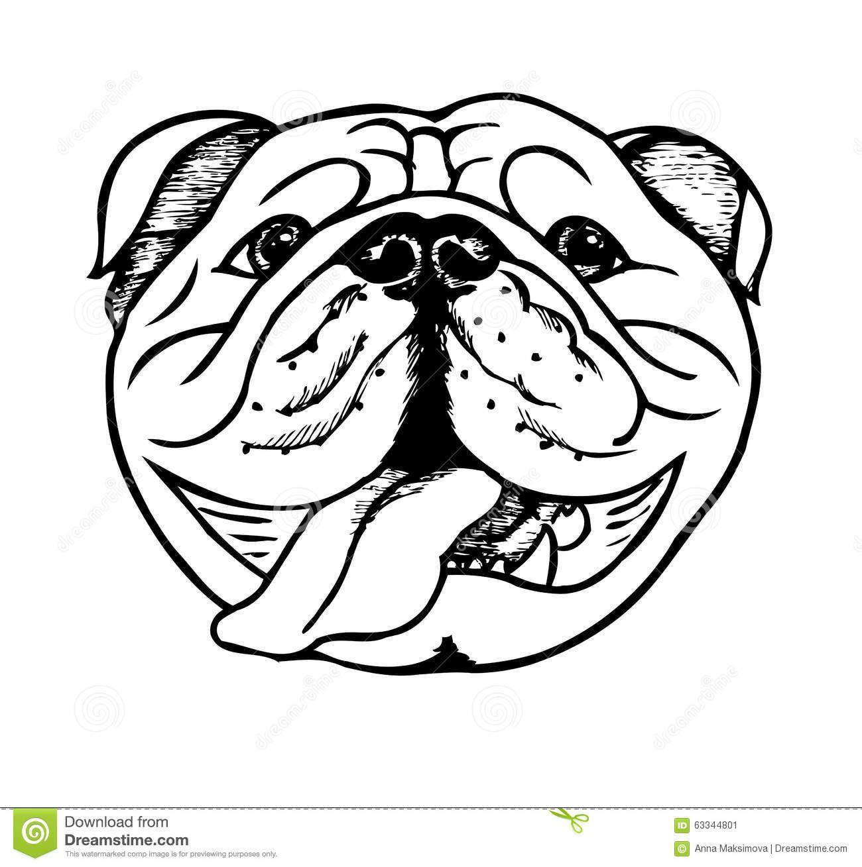 Bulldog Clipart English Bulldog Bulldog English Bulldog