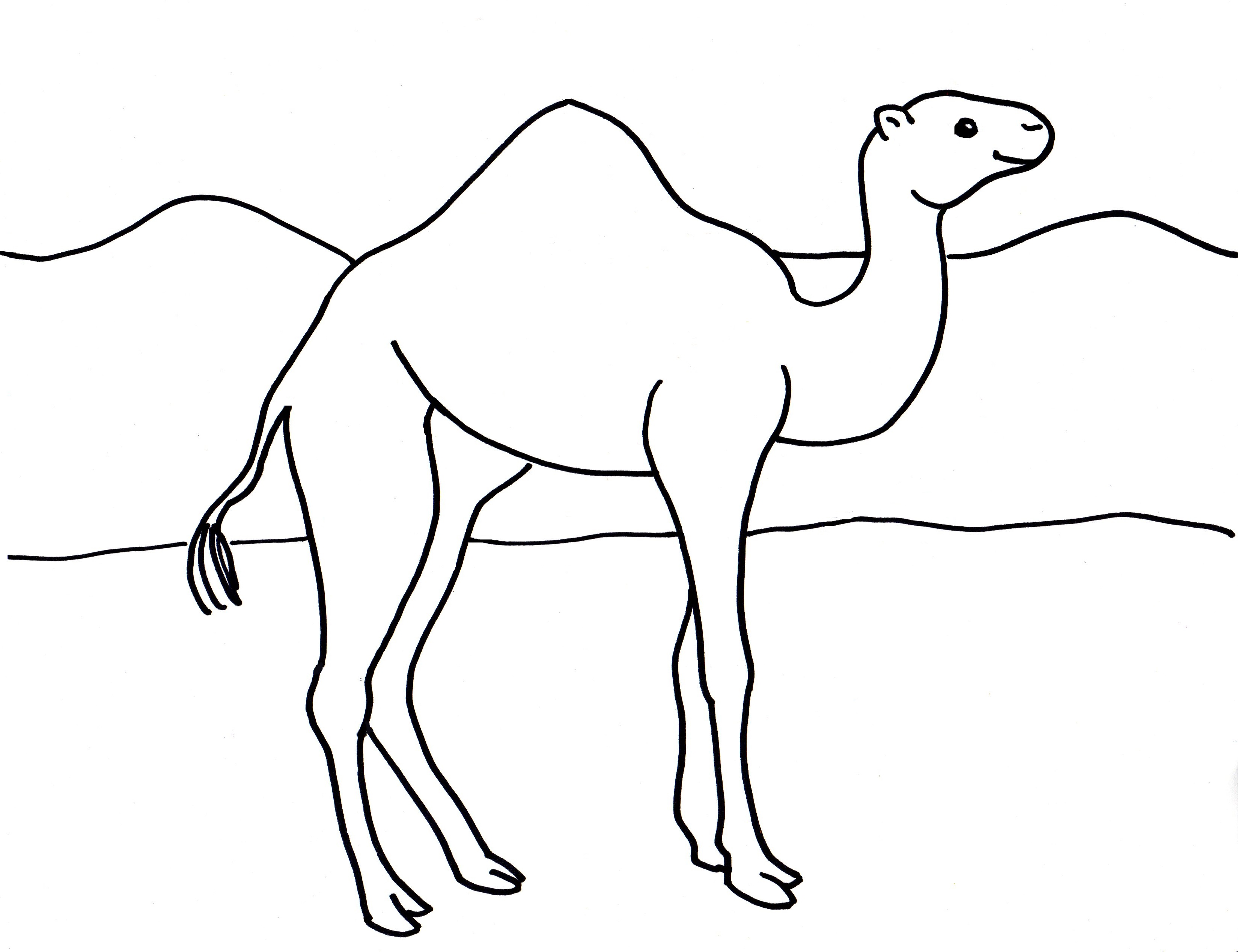 Camel Clipart Colouring Page Camel Colouring Page