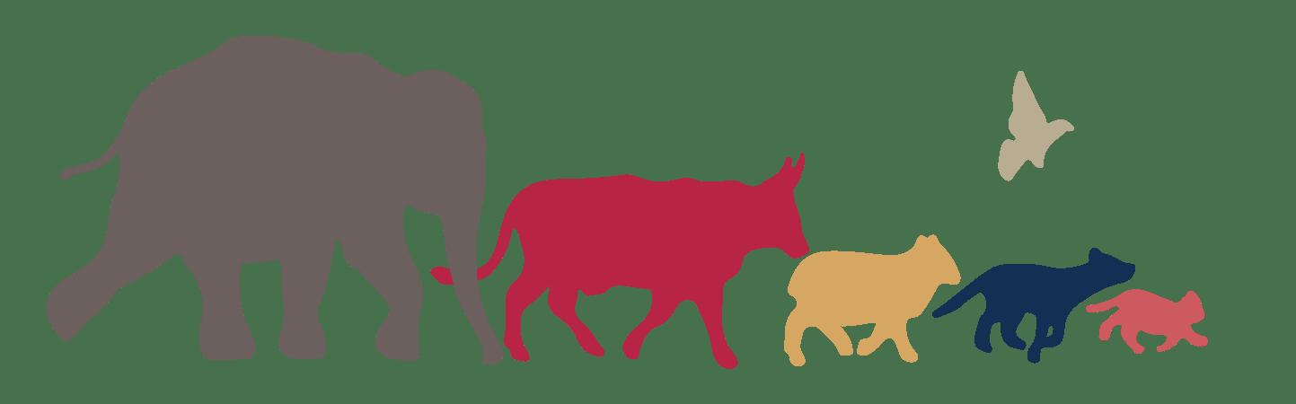 Hoeffler has worked at parrett veterinary clinic since july 1984 and as. Veterinarian clipart veterinary doctor, Veterinarian