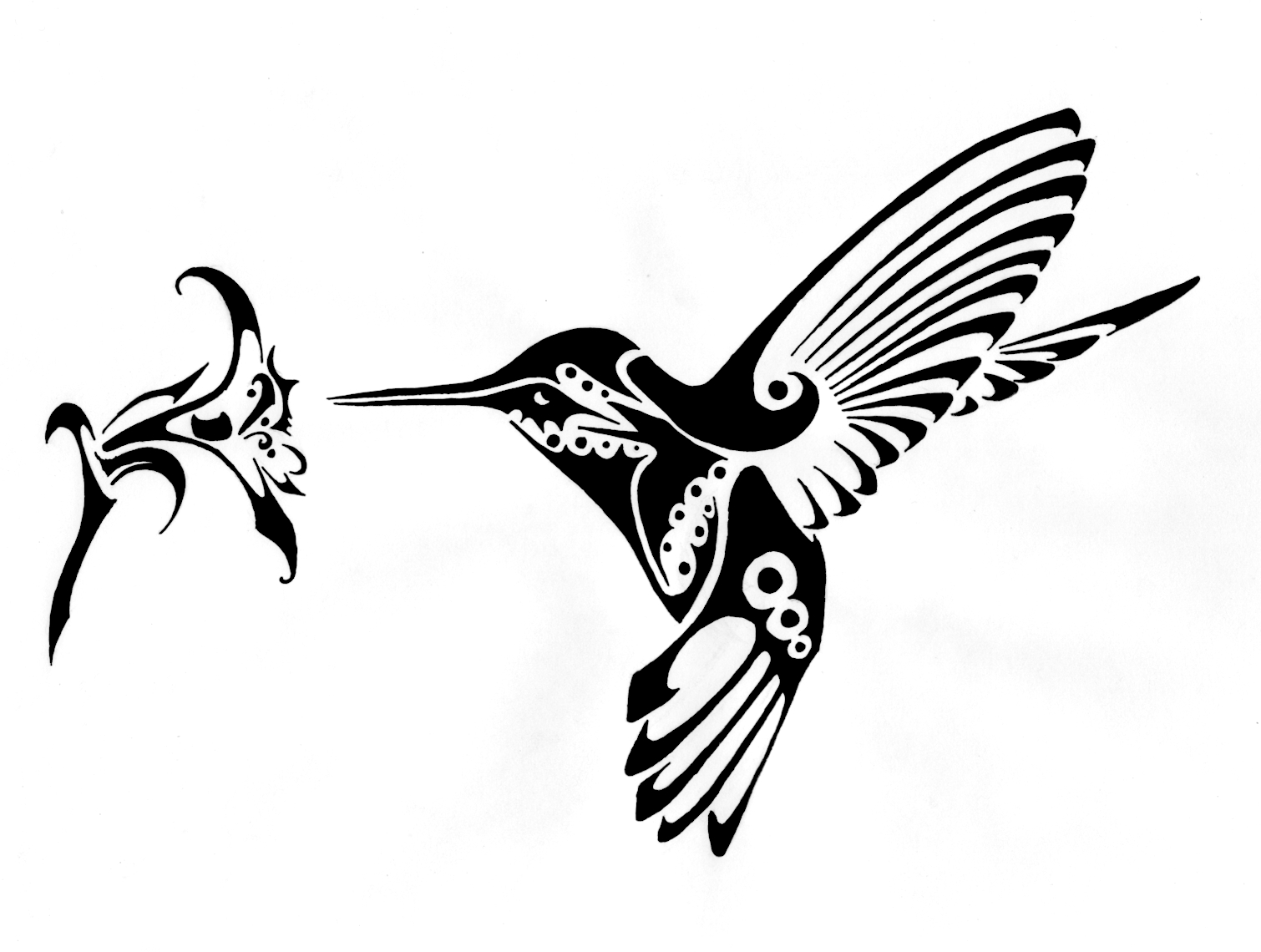 Hummingbird Clipart Black And White Hummingbird Black And