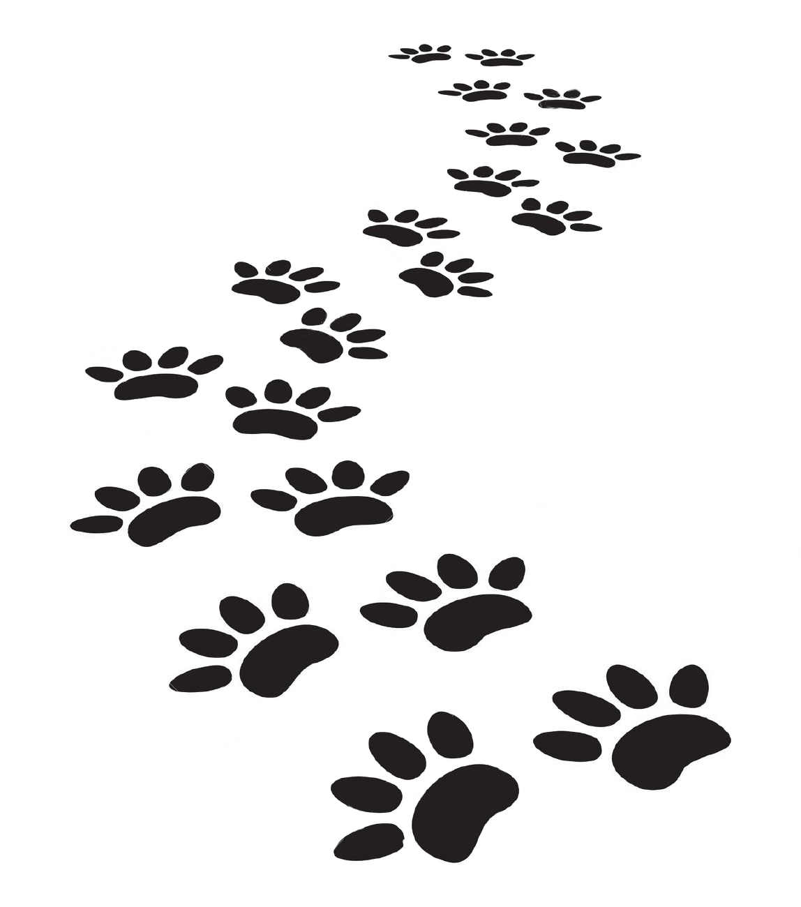 Paw Clipart Trail Paw Trail Transparent Free For Download
