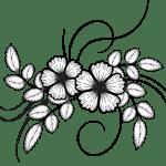 Succulent Clipart Outline Succulent Outline Transparent Free For Download On Webstockreview 2021