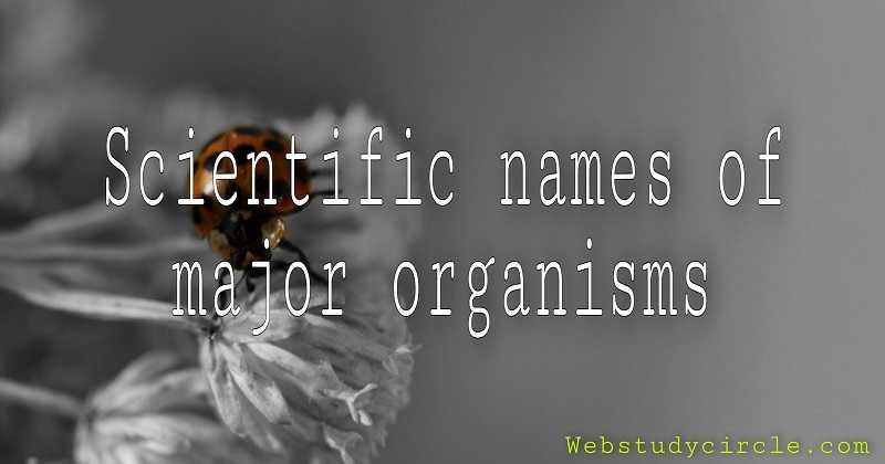 Scientific names of major organisms (प्रमुख जीवधारियों के वैज्ञानिक नाम)