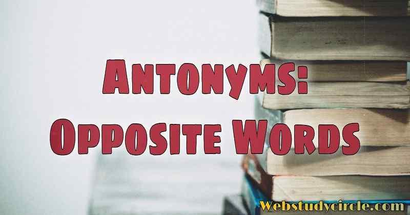Antonyms: Opposite Words