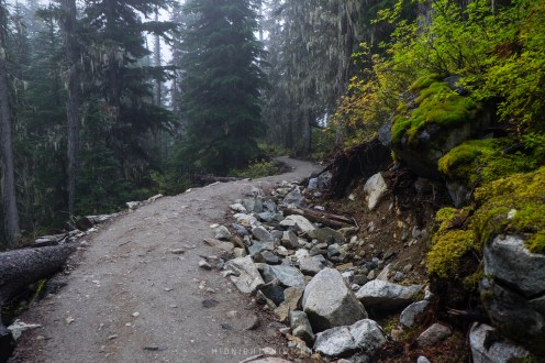 The trails here were clearly maintained, but that didn't take away from the challenge of the elevation climb