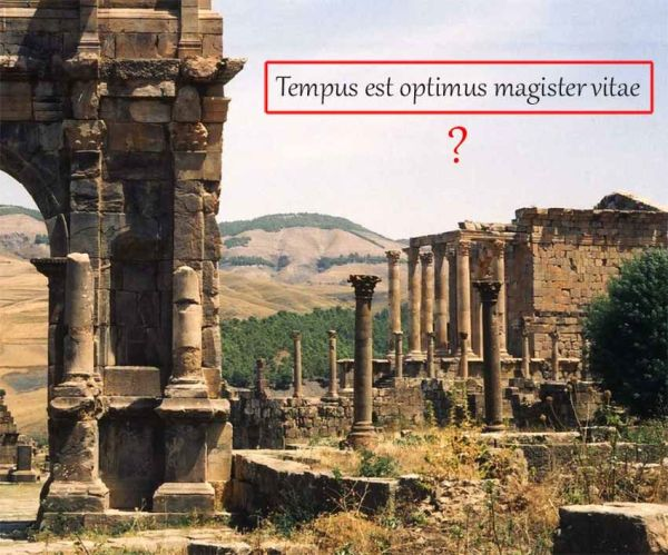 Как быстро перевести текст с картинки, фото и даже видео