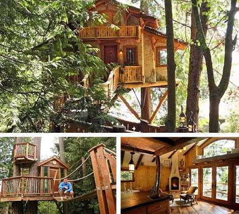 Seattle Tree House Architectural Designers