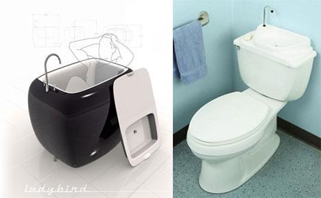 Ladybird and Toilet Lid Sink