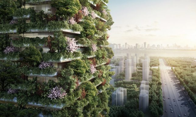 projet de ville forestière