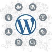 Web Design Hobbyist