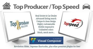 Top Producer Real Estate and Top Speed Car Dealer 2