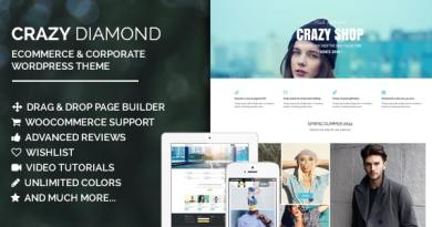 Crazy Diamond - Ecommerce & Corporate Theme 4