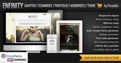 Enfinity - Adaptive Ecommerce Portfolio WP theme 3