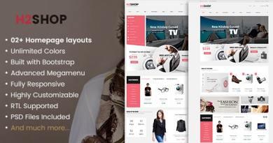 H2Shop - Responsive WooCommerce Shop WordPress Theme 3