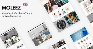 Moleez - Minimalist WordPress Theme for WooCommerce 3