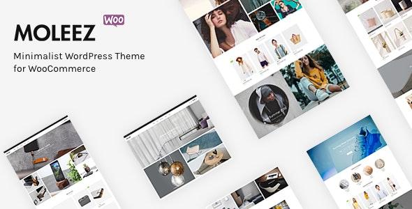 Moleez - Minimalist WordPress Theme for WooCommerce 1