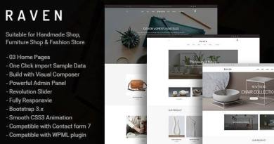 Raven - Responsive WooCommerce and Blog WordPress Theme 4