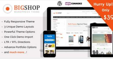 The Bigshop - WooCommerce WordPress Theme! 4