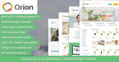 VG Orion - Business & eCommerce WordPress Theme 4