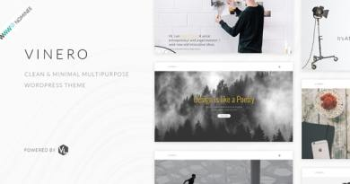 Vinero - Creative MultiPurpose WordPress Theme 11