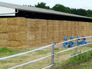 straw bales in barn