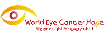 Daisy's Eye Cancer Fund Logo