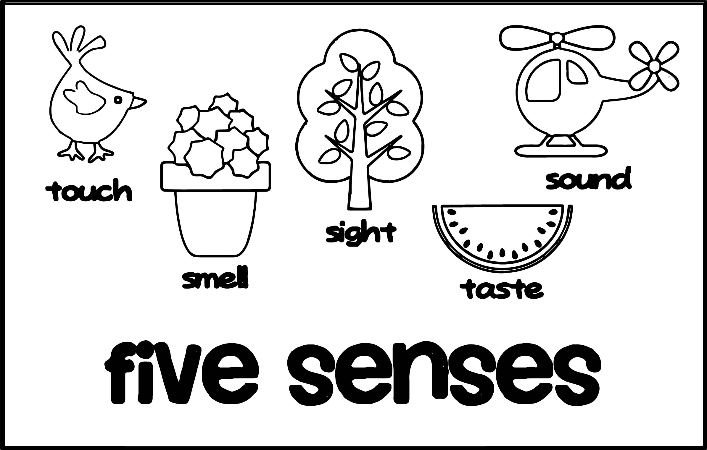 Five Senses Coloring Pages