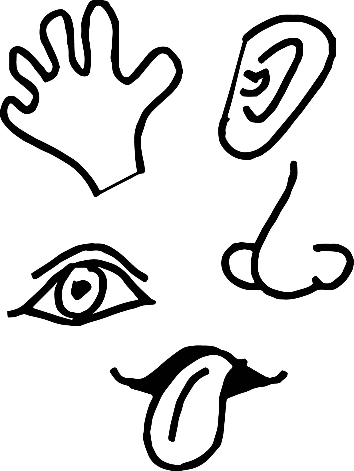 5 Senses Picture Coloring Page