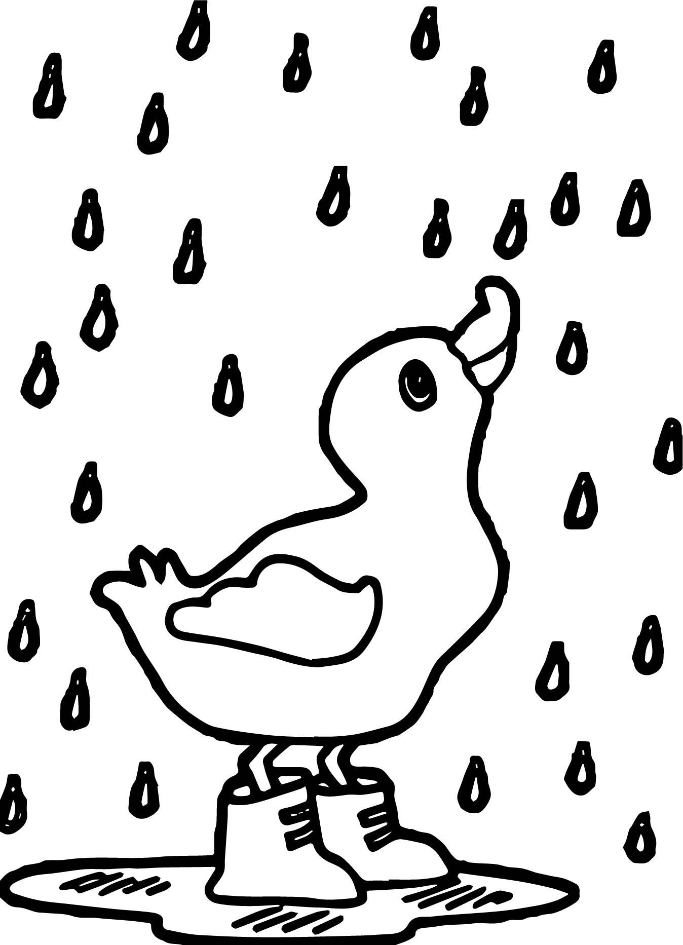 Rain Duck April Coloring Page