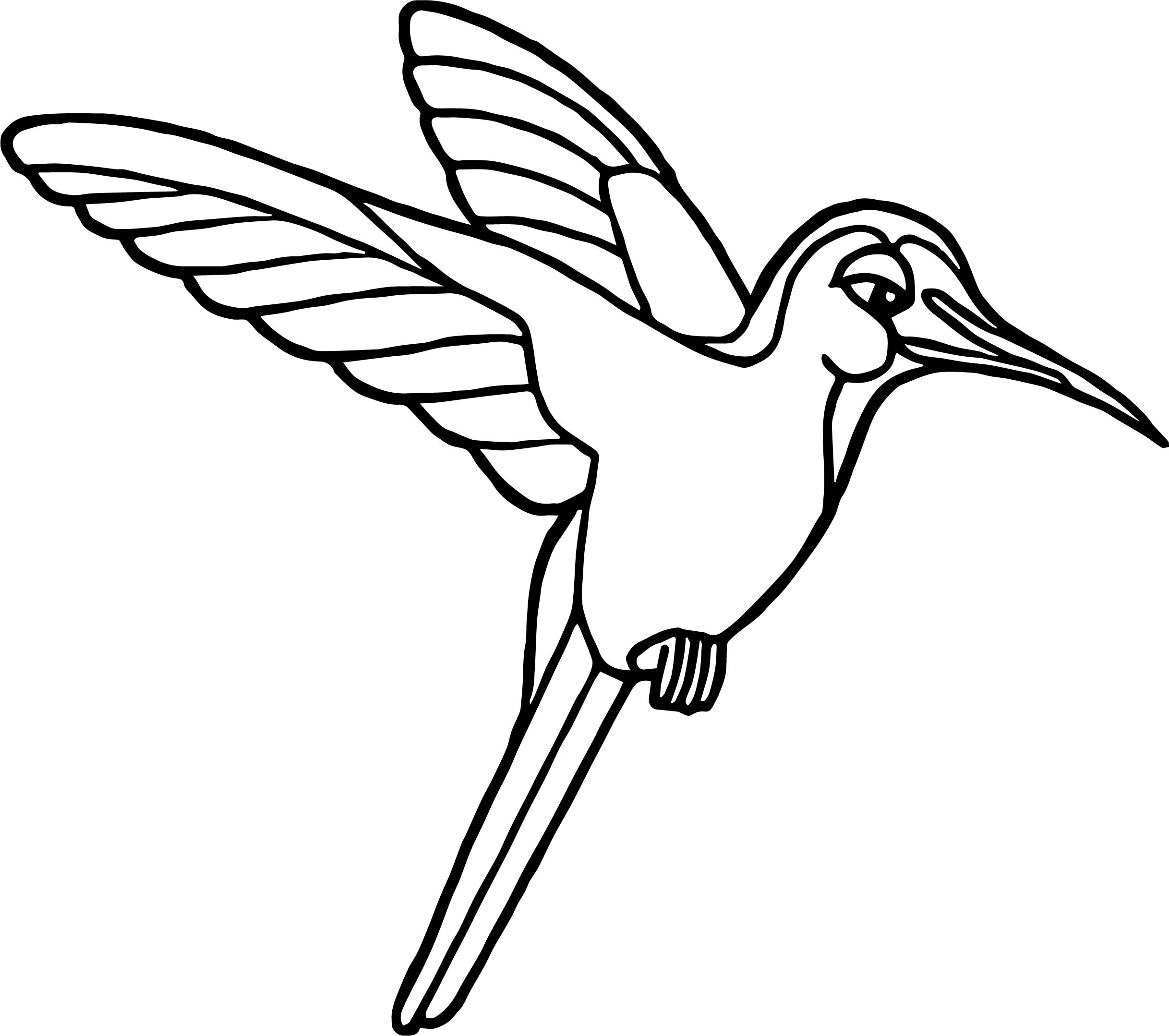 Easy Coloring Of A Hummingbird Coloring Pages