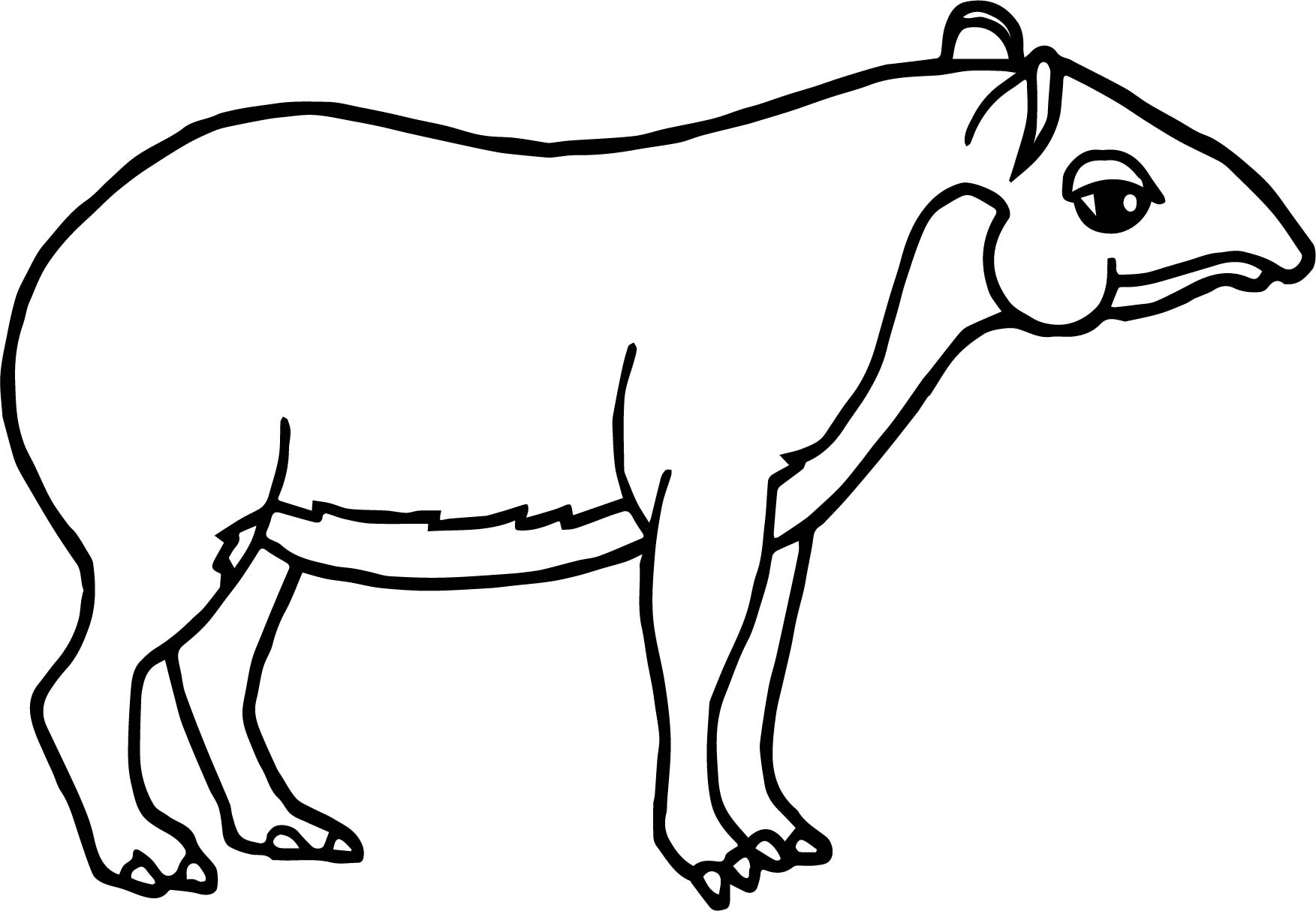 Rainforest Tapir Coloring Page