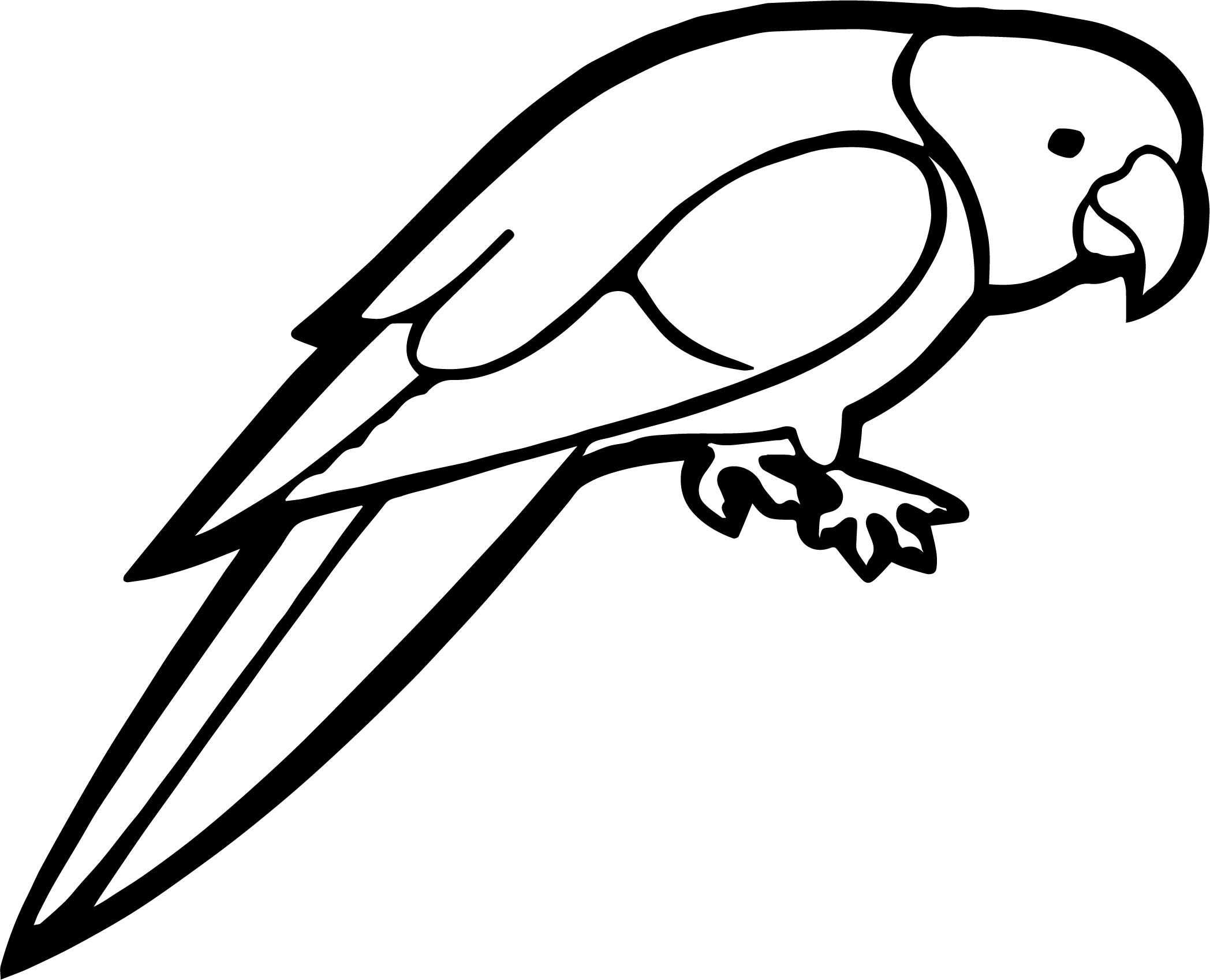 Coloring Pages Of Parrots