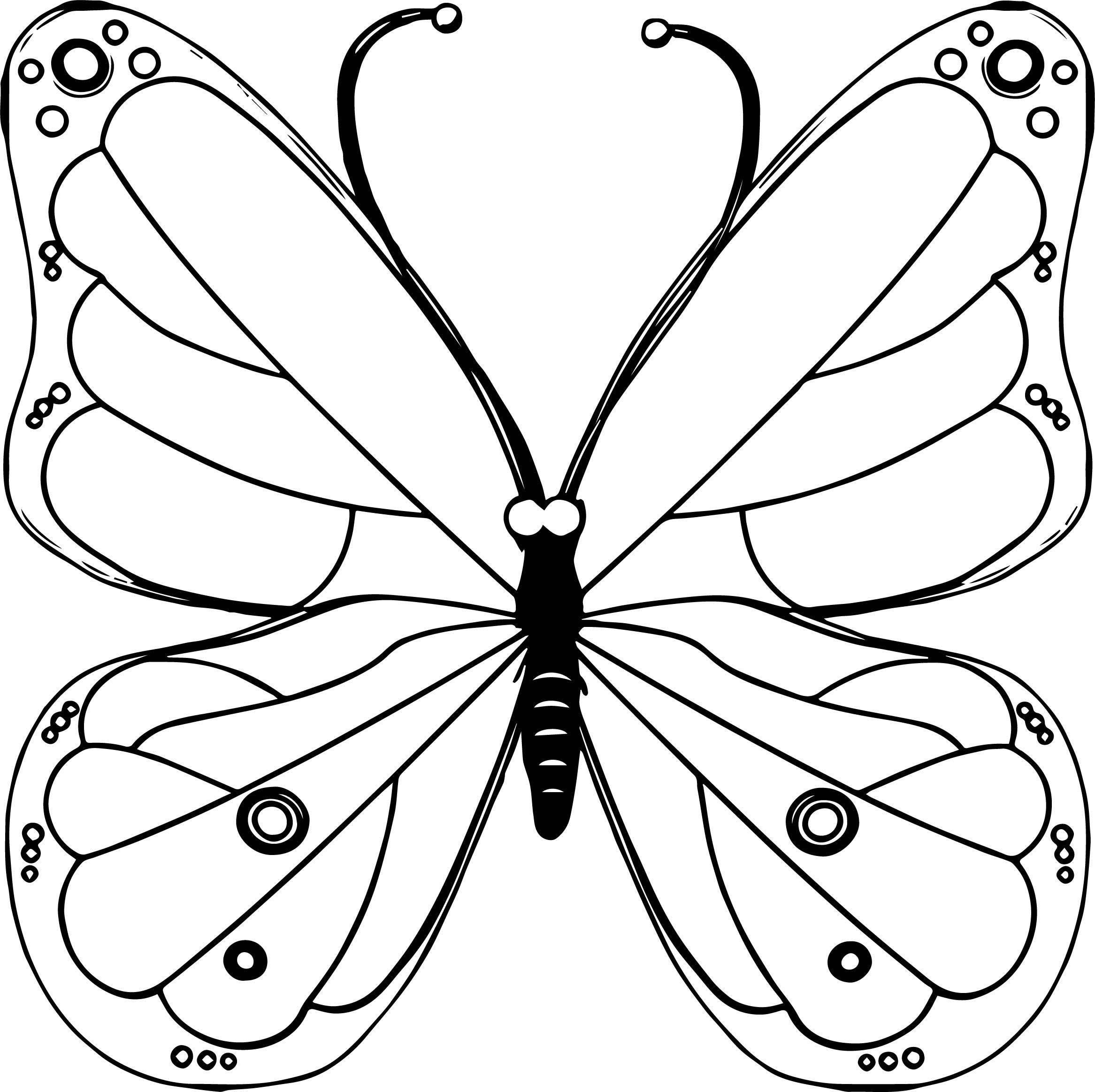 Pink Transparent Butterfly Clipart Coloring Page