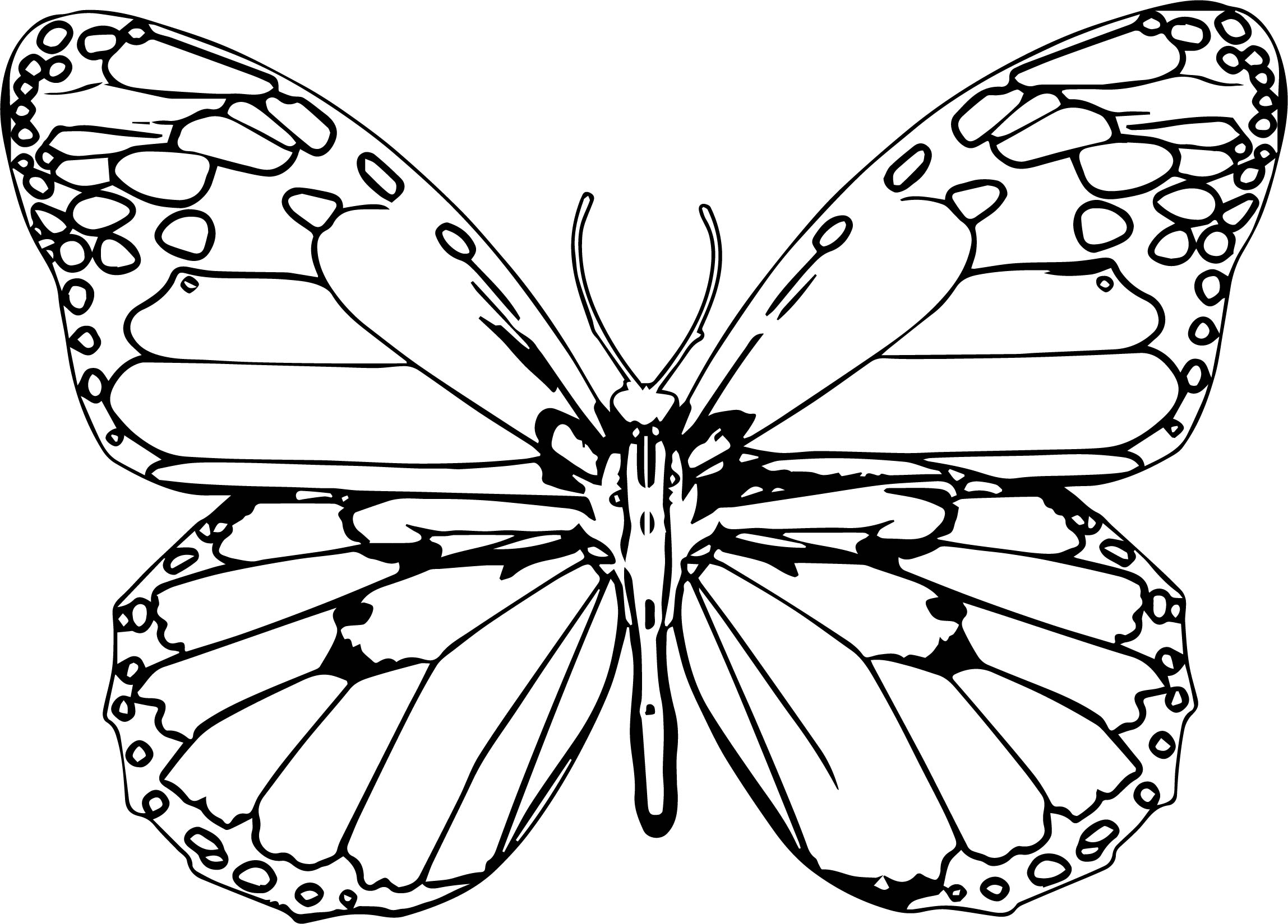 Butterfly Clipart Coloring Page 03