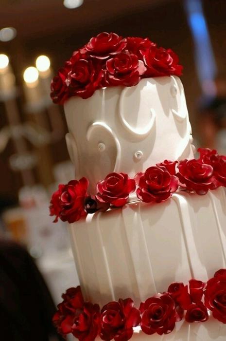 Краснобелое оформление свадьбы